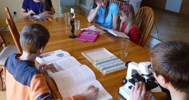 Homeschooling Teens- Summer time is originating Time for you to Work
